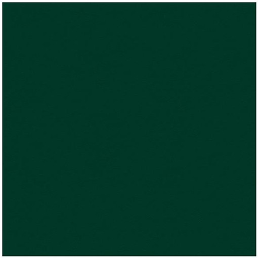 My Colors Classic Cardstock 216g/m² Forest Green 30,5x30,5cm